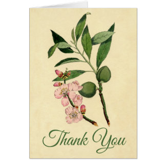 Vintage Floral Thank You Pink Almond Flower Card