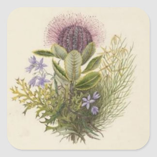 Vintage Floral Thistle Sticker