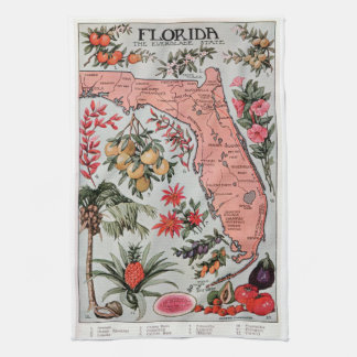 Vintage Florida Map Kitchen Towel