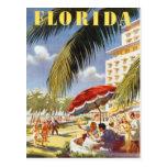 Vintage Florida, USA - Postcard