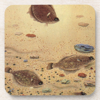 Vintage Flounders, Marine Ocean Life Flat Fish Coaster