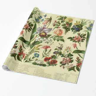 Vintage Flower Botanicals Wrapping Paper