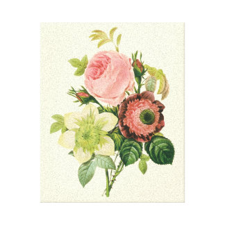 Vintage Flowers, Anemone Roses Clematis by Redoute Canvas Print