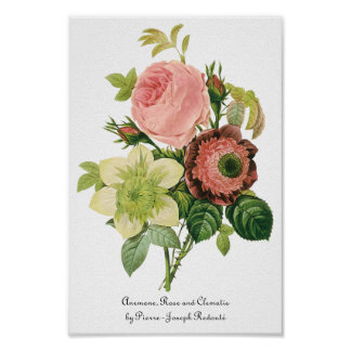 Vintage Flowers, Anemone Roses Clematis by Redoute Poster