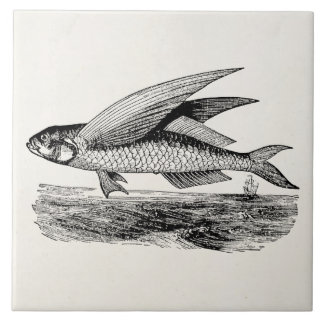 Vintage Flying Fish - Aquatic Fishes Template Tile