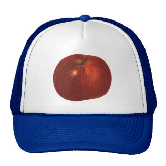 Vintage Food Fruit, Organic Red Delicious Apple Trucker Hat