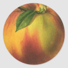 Vintage Food Fruit, Ripe Organic Peach with Leaf Classic Round Sticker