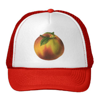 Vintage Food Fruit, Round Ripe Peach with Leaf Trucker Hat
