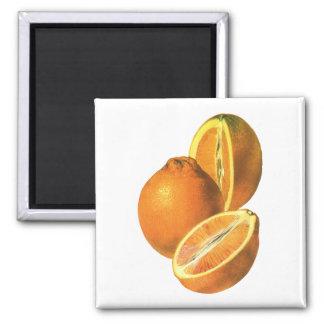 Vintage Foods, Fruit Organic Fresh Healthy Oranges Square Magnet