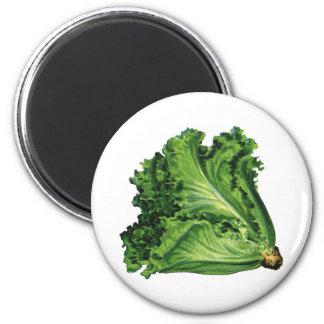 Vintage Foods, Green Leaf Lettuce Vegetables 2 Inch Round Magnet