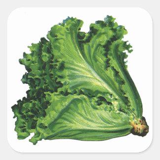 Vintage Foods Vegetables Green Leaf Lettuce Stickers