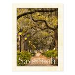 Vintage Forsyth Park - Savannah, GA Postcard