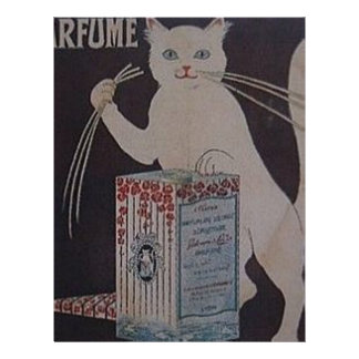 Vintage French Advertisement - cats Letterhead