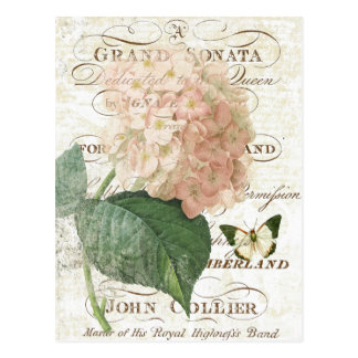 Vintage French Botanical hydrangea postcard