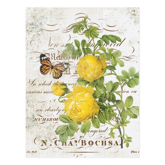 Vintage French Botanical rose postcard