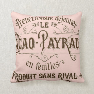 Vintage French Chocolate American MoJo Pillows