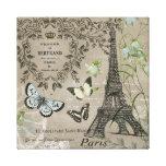 Vintage French garden Eiffel Tower stretchedcanvas Stretched Canvas Prints