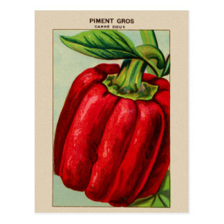 Vintage French Red Bell Pepper Piment Postcard
