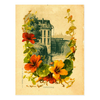 Vintage French scenic/nasturtium postcard