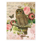 Vintage French shabby chic owl postcard
