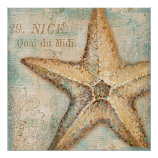 Vintage French Starfish Art Poster