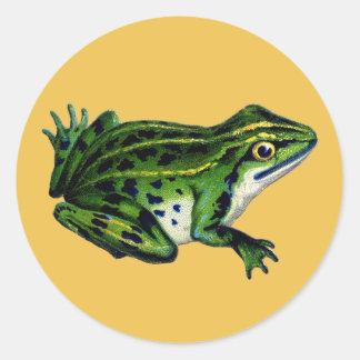 Vintage Frog Illustration Stickers