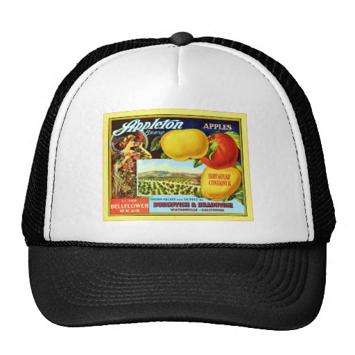 Vintage Fruit Crate Label Hats