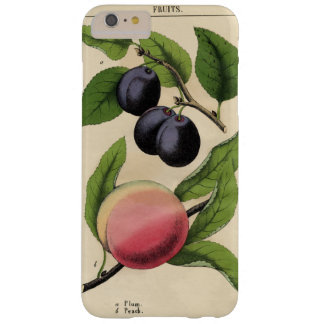 Vintage Fruit Peach Botanical Print iPhone 7 Cases