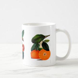 Vintage fruits-mug coffee mug