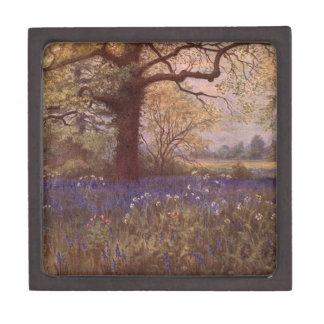 Vintage Garden Art - Martin Thomas Mower Premium Gift Box