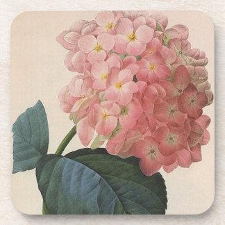 Vintage Garden Flowers, Pink Hydrangea Hortensia Coaster
