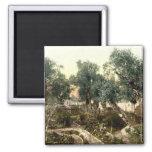 Vintage Garden of Gethsemane Jerusalem Israel 1890 Square Magnet