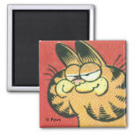 Vintage Garfield magnet