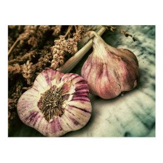 Vintage Garlic Postcard