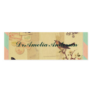 Vintage,girly,whimsical,cute,collage,shabby chic pack of skinny business cards