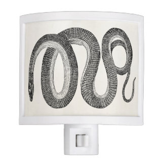 Vintage Glass Snake - Reptile Template Blank Night Light