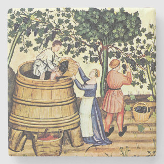 Vintage Grape Harvest Image Coaster