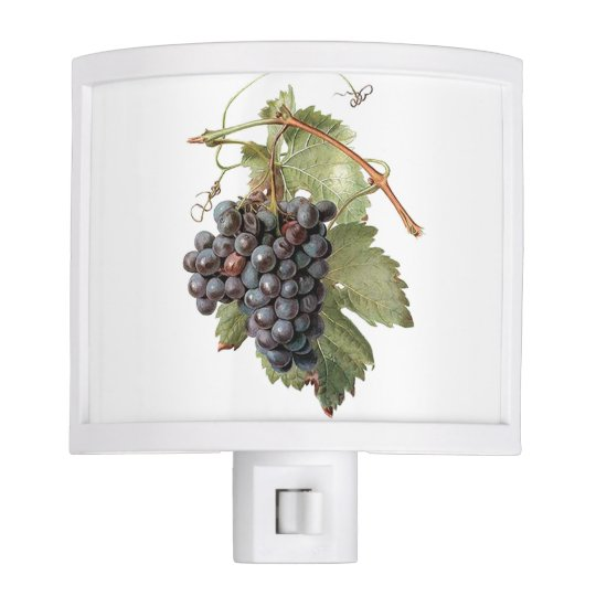 Vintage Grape Image Night Light