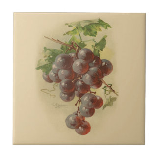 Vintage grapes tile