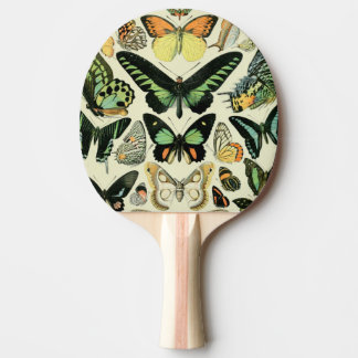 Vintage Green Butterflies Ping-Pong Paddle