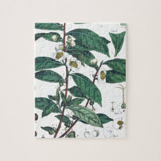Vintage Green Tea Botanical Print Jigsaw Puzzle
