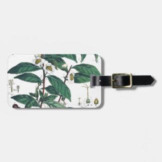 Vintage Green Tea Botanical Print Luggage Tag