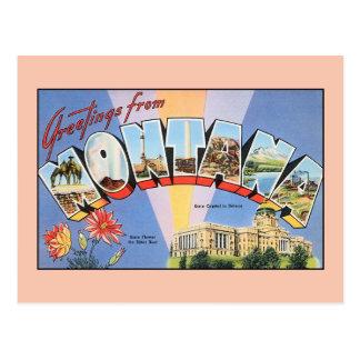Vintage greetings from Montana Postcard