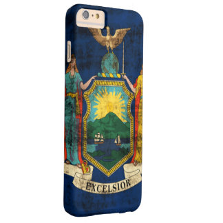 Vintage Grunge State Flag of New York Barely There iPhone 6 Plus Case