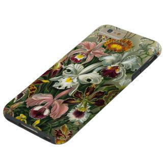 Vintage Haeckel Orchids Tough iPhone 6 Plus Case