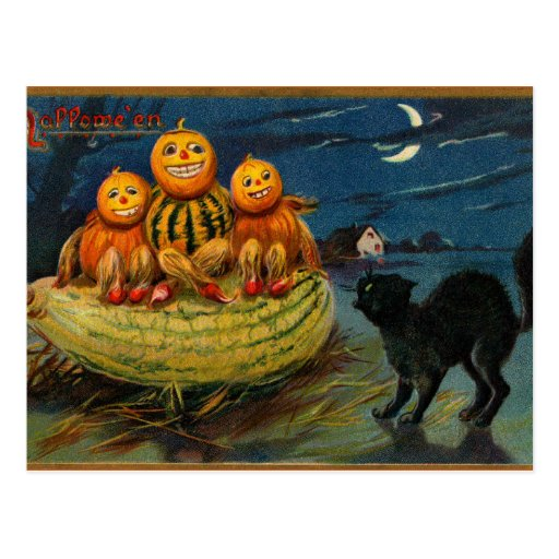 Vintage Halloween Party Black Cat Scary Pumpkins Postcard