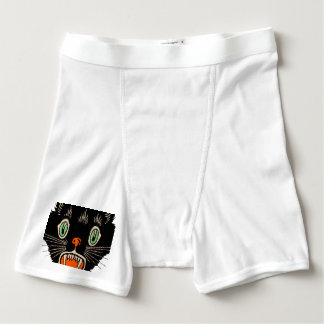 Vintage Halloween Scared Black Cat Boxer Briefs