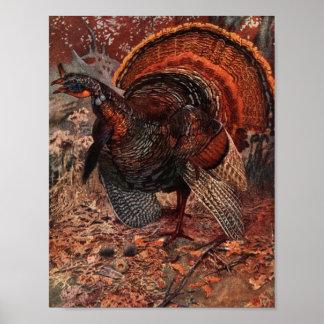 Vintage Happy Thanksgiving Turkey Poster