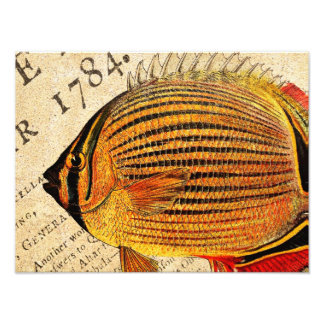 Vintage Hawaiian Butterfly Fish Customized Antique Photo Print