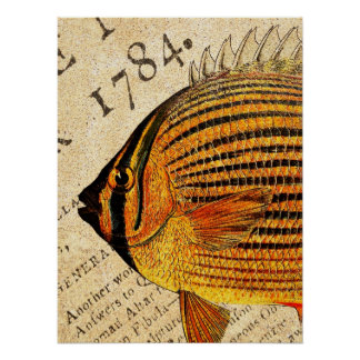 Vintage Hawaiian Butterfly Fish Customized Fishes Poster